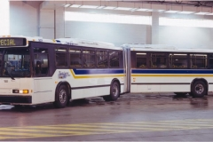 11 - 13-Neoplan_Westchester_Liberty